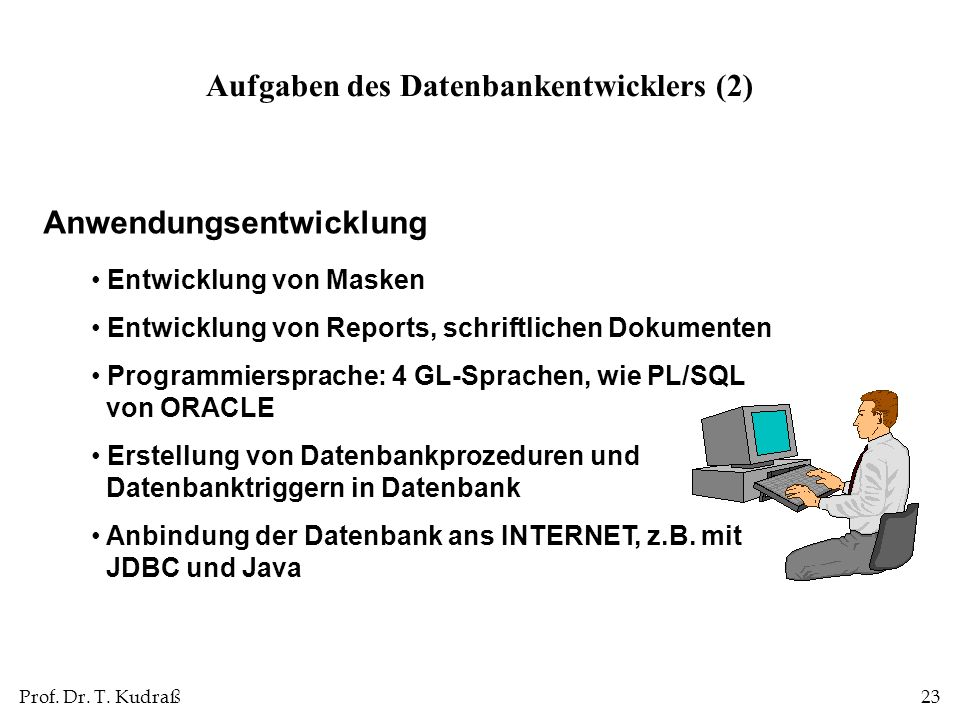 Aufgaben des Datenbankentwicklers (2)