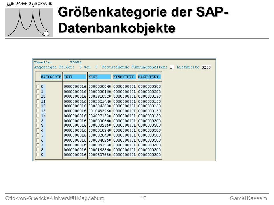 Größenkategorie der SAP-Datenbankobjekte