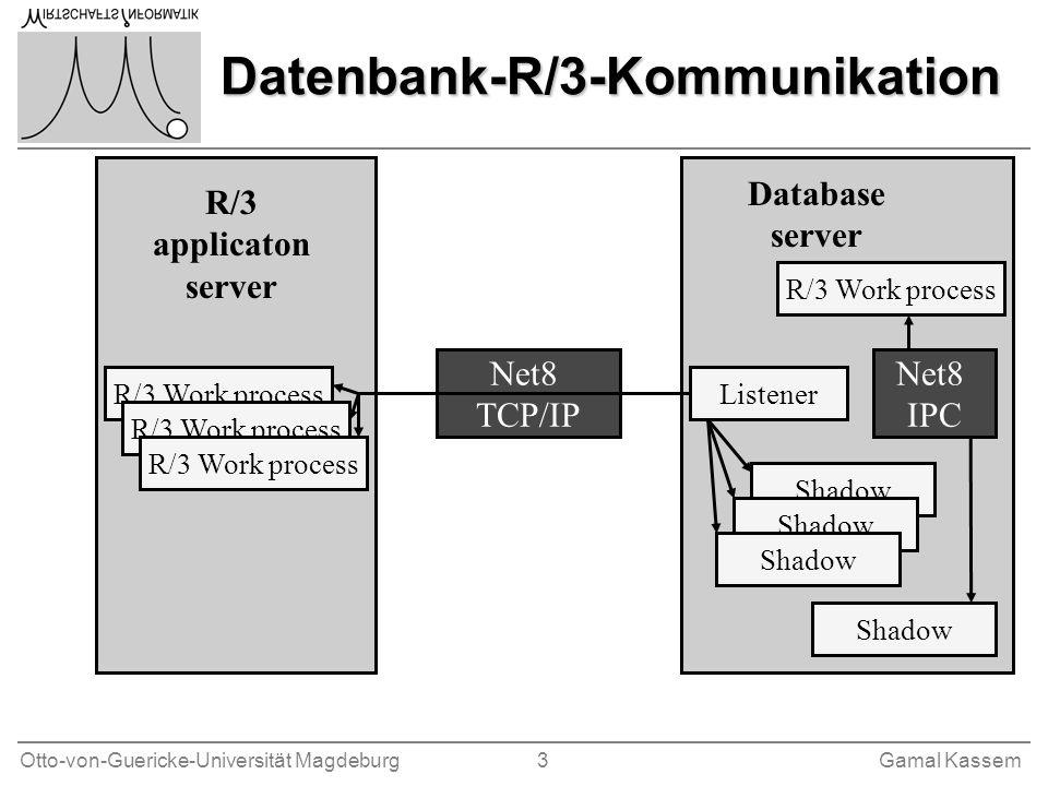 Datenbank-R/3-Kommunikation