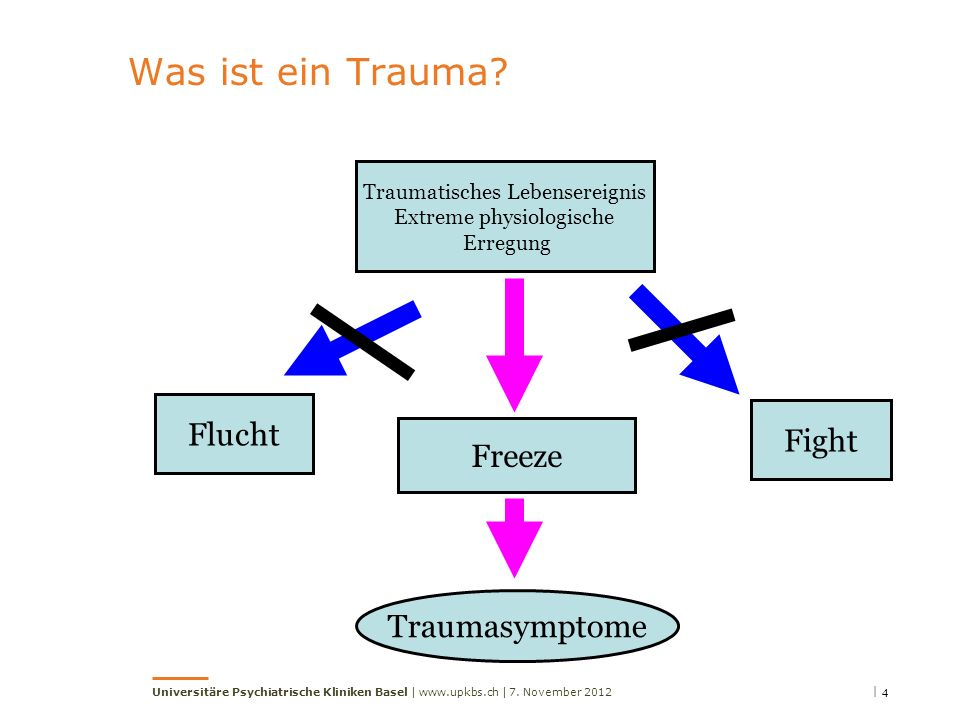 Was ist ein Trauma Flucht Fight Freeze Traumasymptome