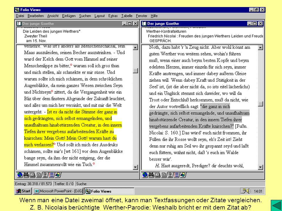 Wenn man eine Datei zweimal öffnet, kann man Textfassungen oder Zitate vergleichen.