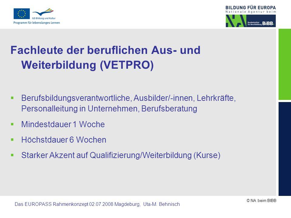 Fachleute der beruflichen Aus- und Weiterbildung (VETPRO)