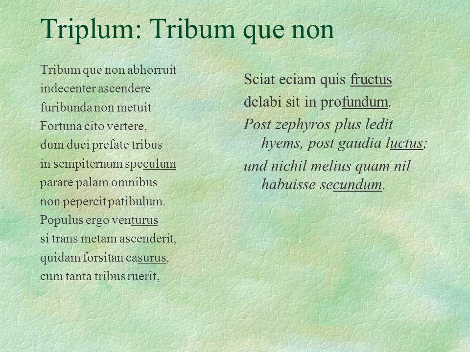 Triplum: Tribum que non