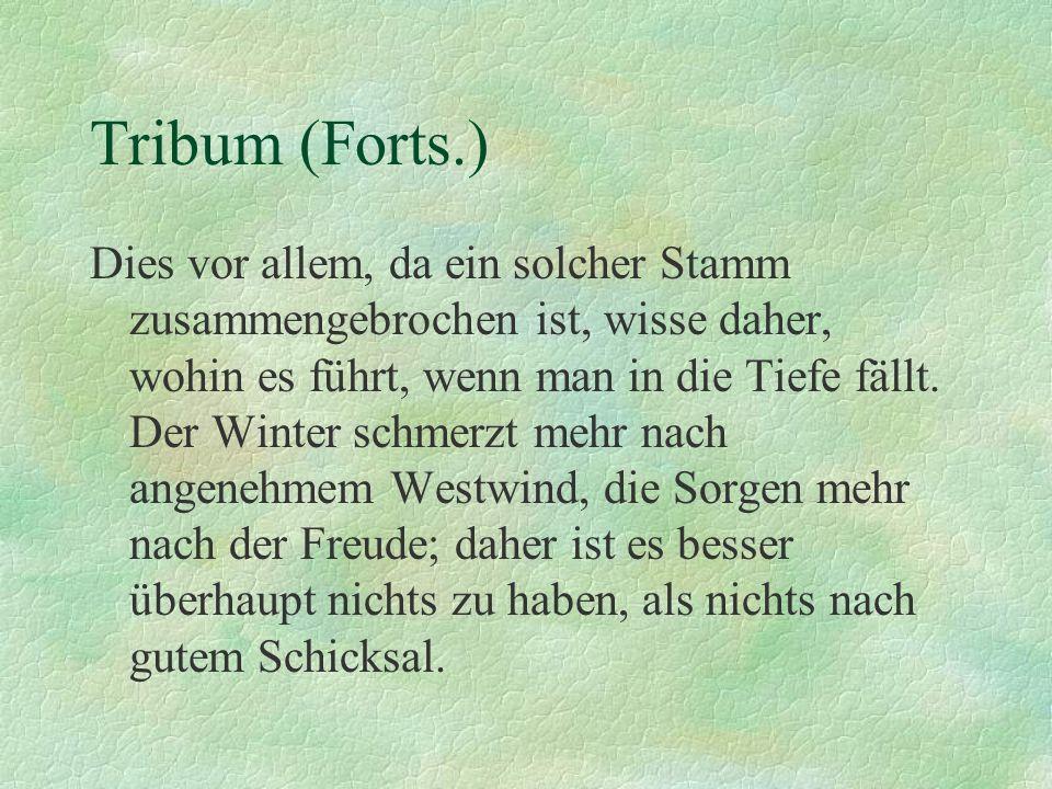 Tribum (Forts.)