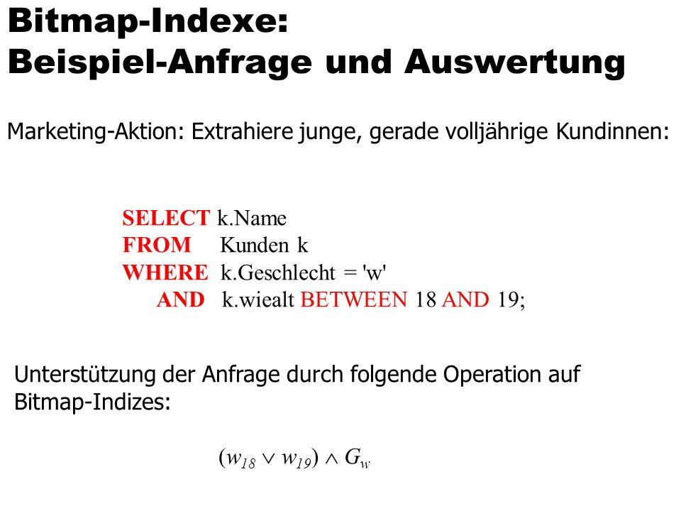 Bitmap-Indexe: Beispiel-Anfrage und Auswertung