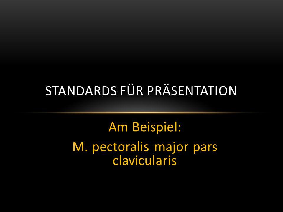 Standards für Präsentation