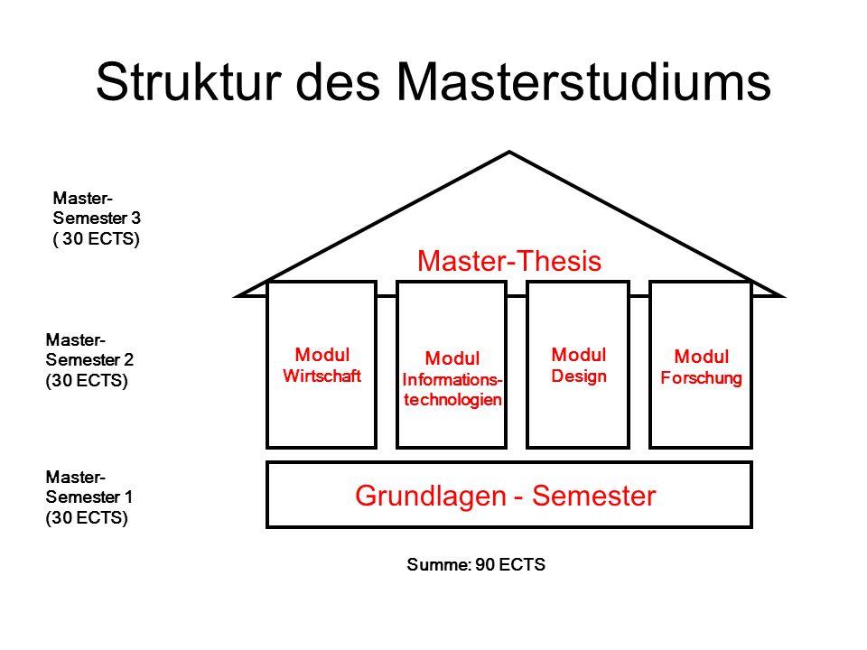 Struktur des Masterstudiums