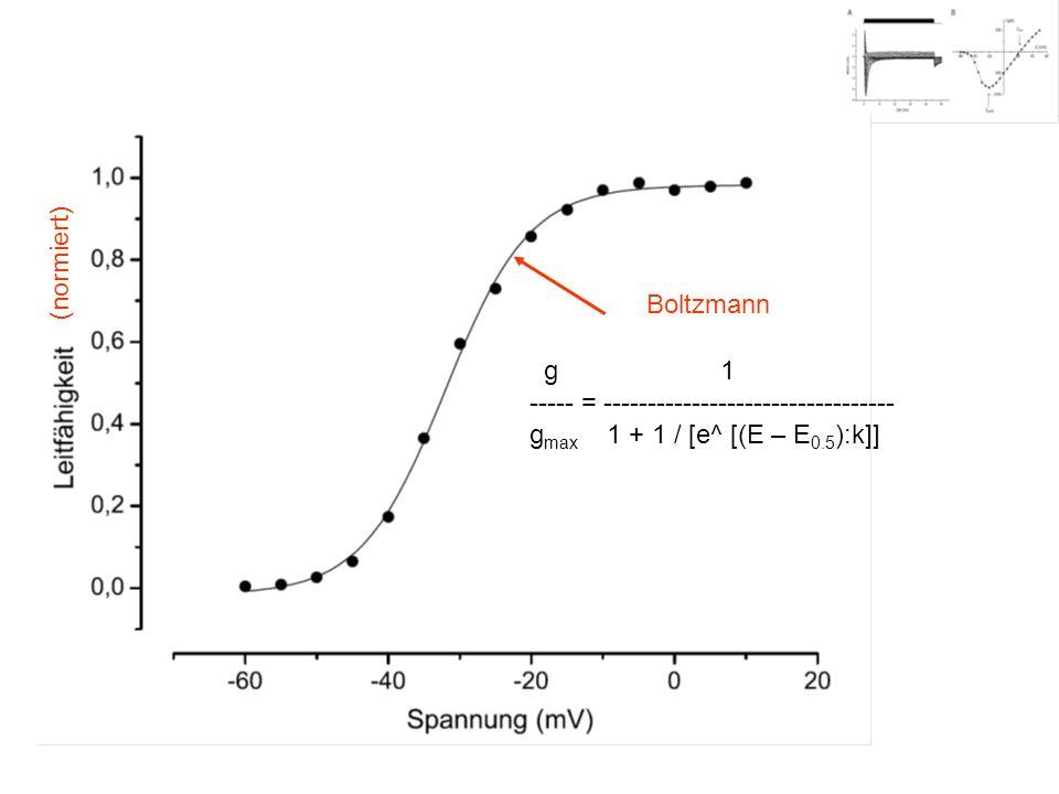 (normiert) Boltzmann. g 1.
