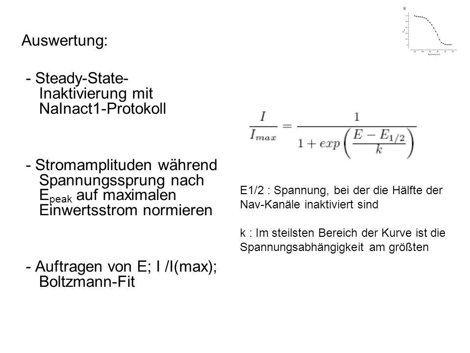 - Steady-State-Inaktivierung mit NaInact1-Protokoll