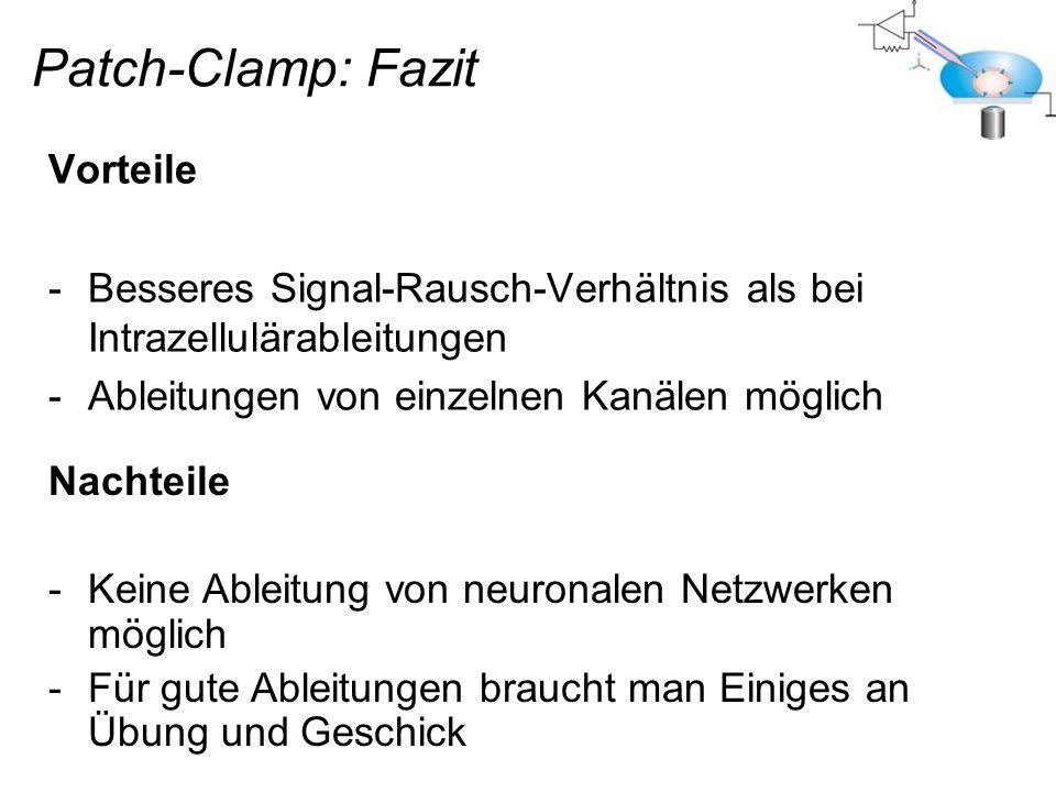 Patch-Clamp: Fazit Vorteile