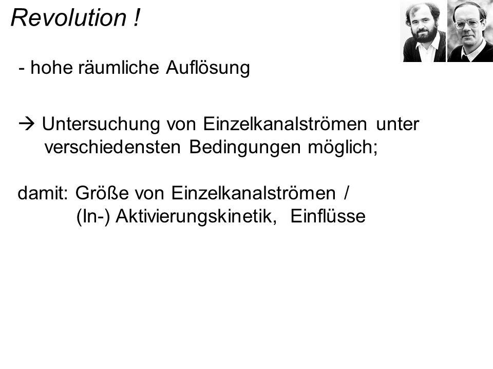 Revolution ! - hohe räumliche Auflösung