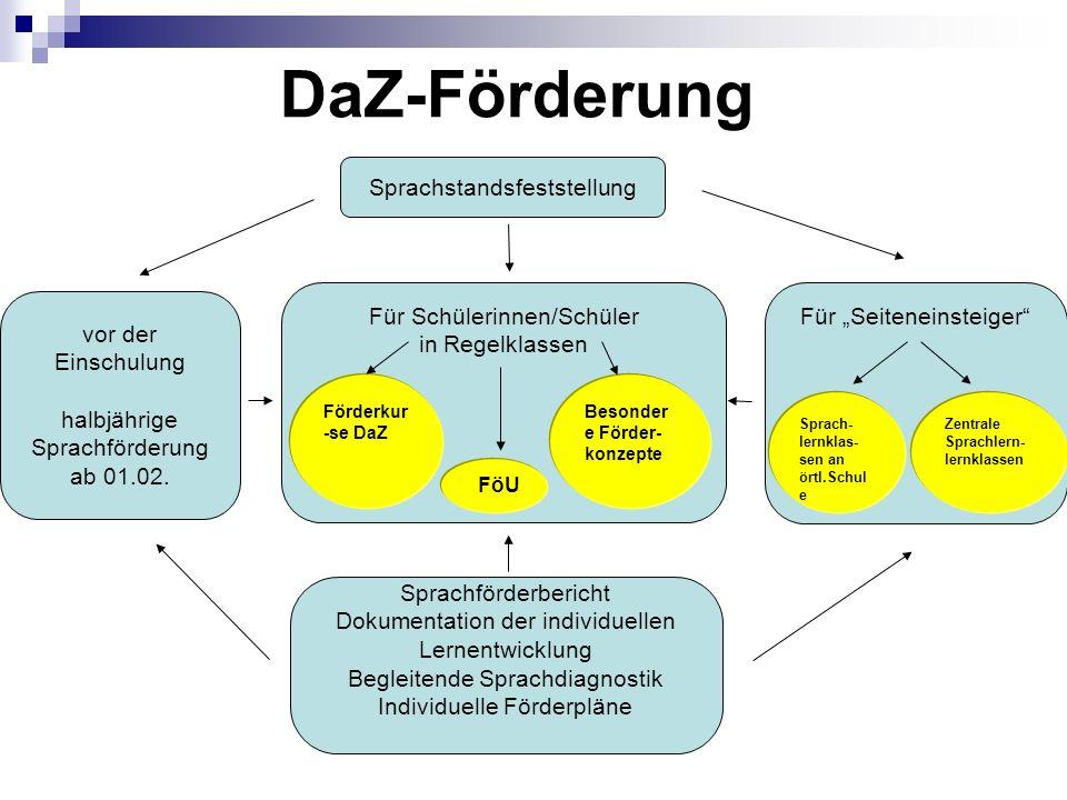DaZ-Förderung Sprachstandsfeststellung Für Schülerinnen/Schüler