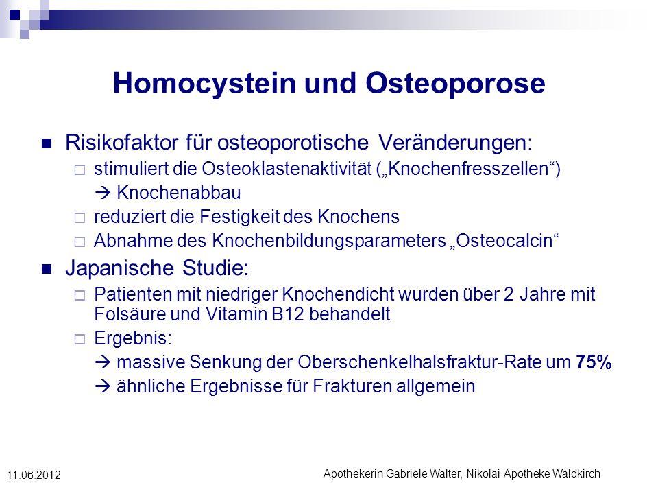 Homocystein und Osteoporose