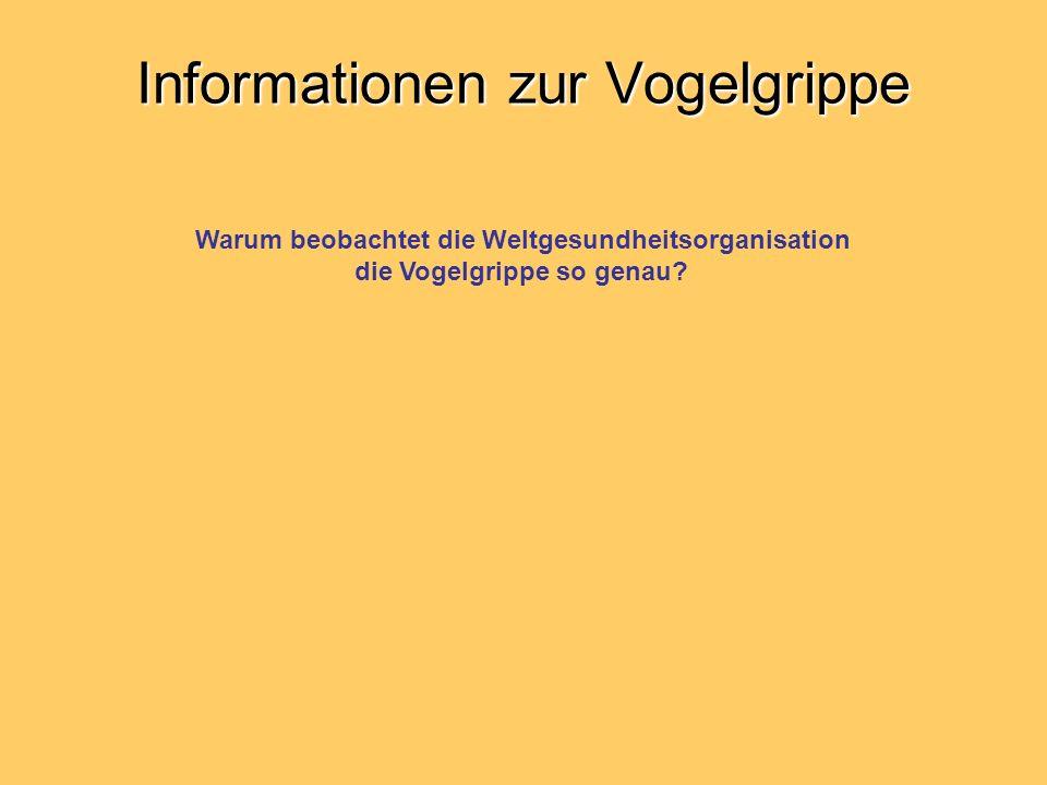 Informationen zur Vogelgrippe
