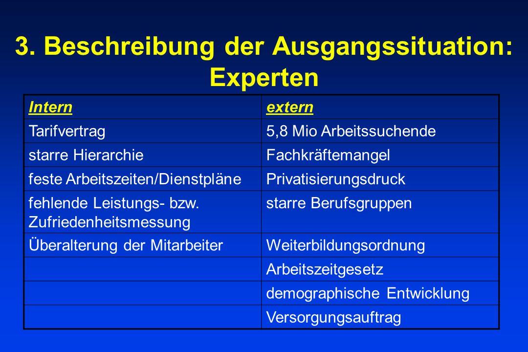 3. Beschreibung der Ausgangssituation: Experten