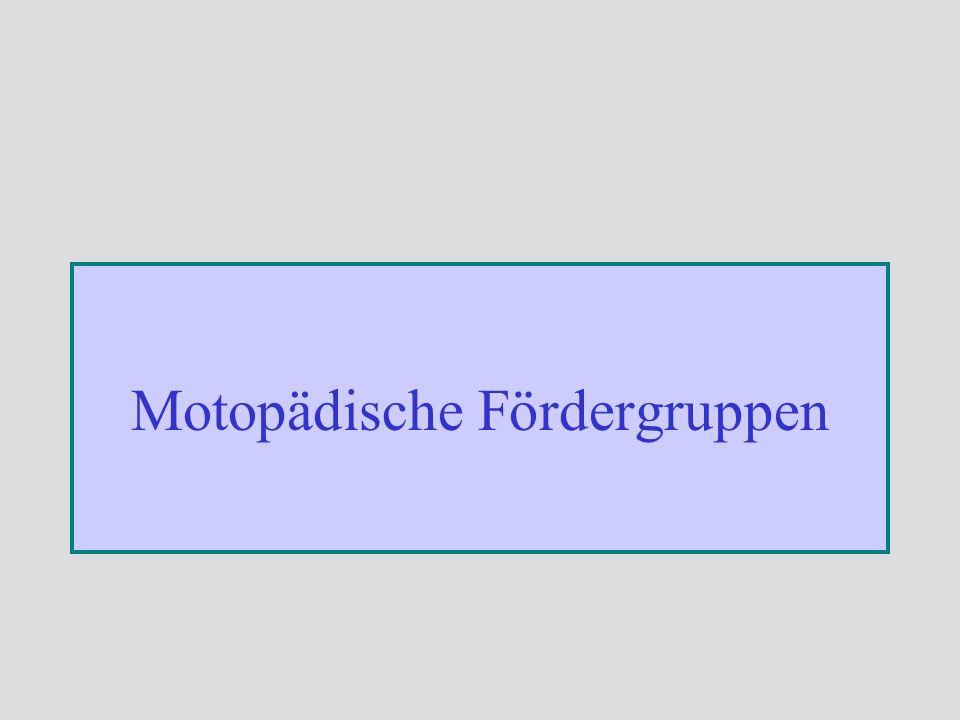 Motopädische Fördergruppen