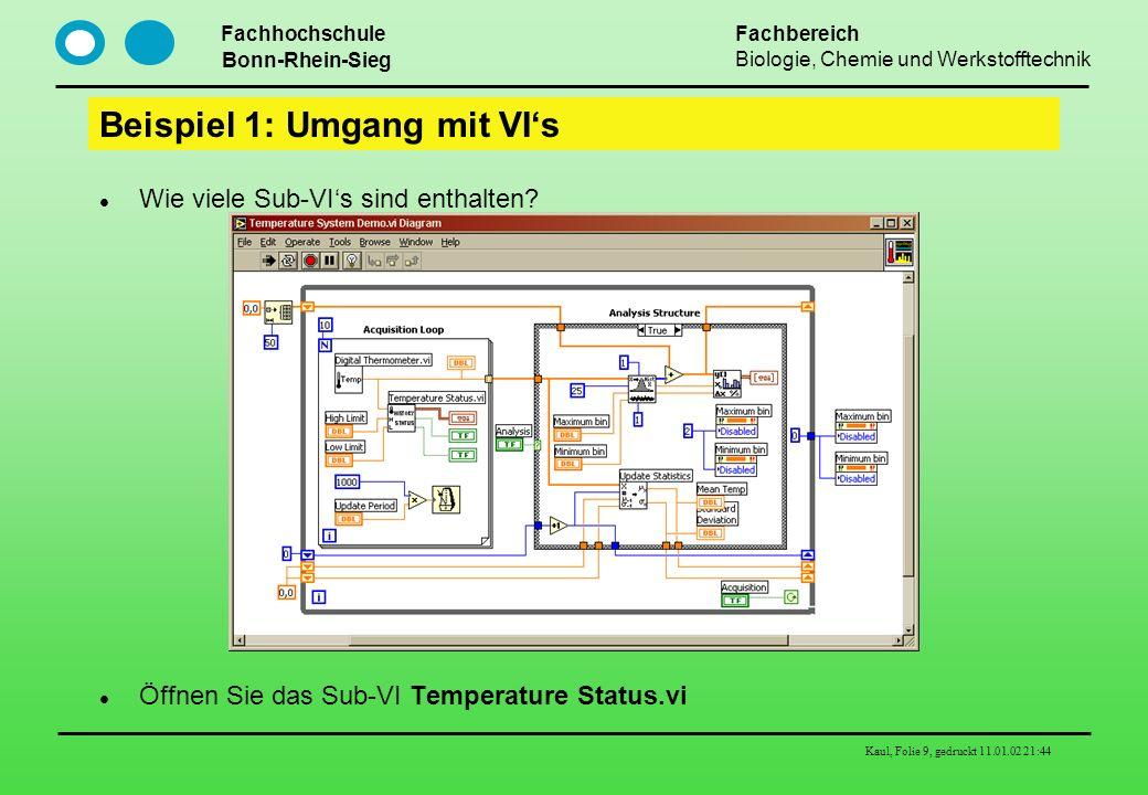 Beispiel 1: Umgang mit VI's