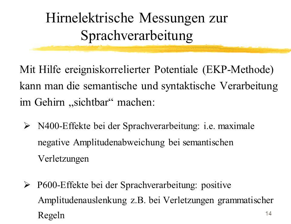 Hirnelektrische Messungen zur Sprachverarbeitung