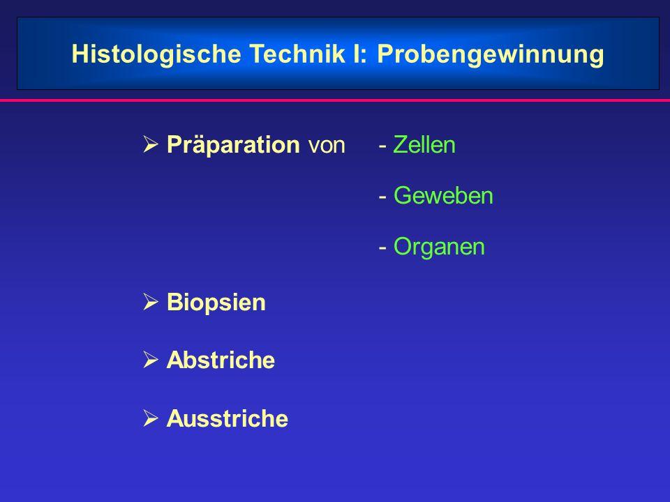 Histologische Technik I: Probengewinnung