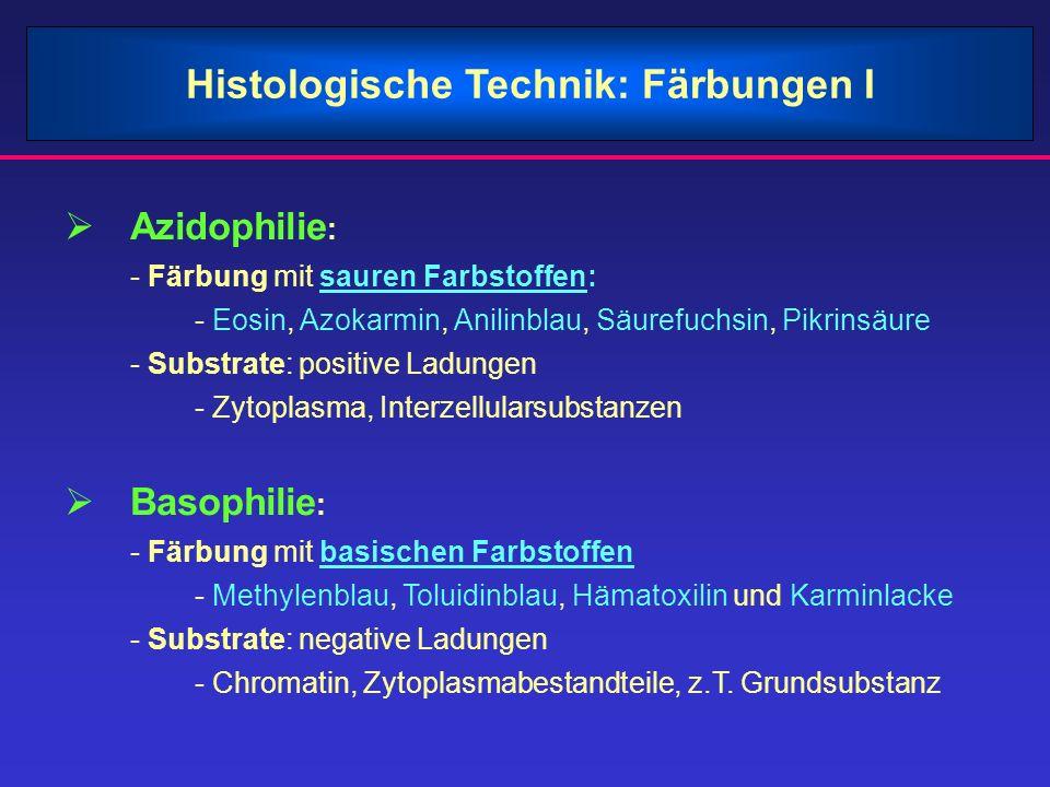 Histologische Technik: Färbungen I
