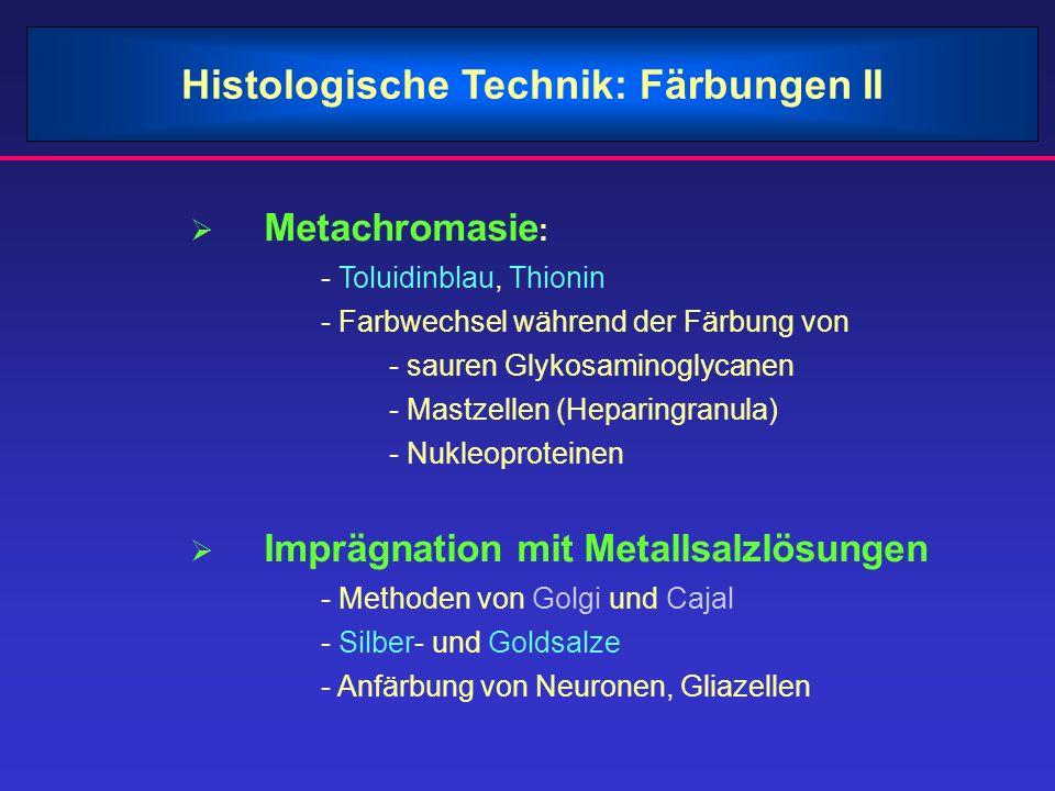 Histologische Technik: Färbungen II