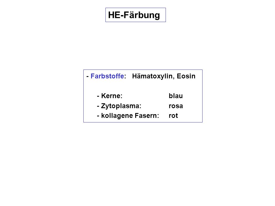 HE-Färbung - Farbstoffe: Hämatoxylin, Eosin - Kerne: blau