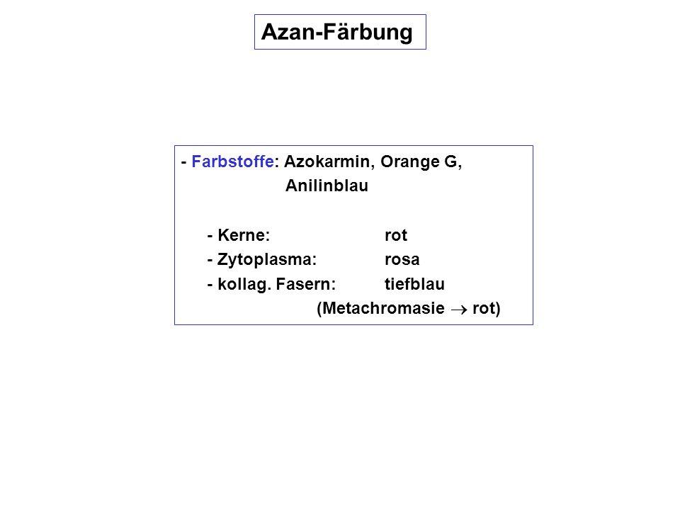 Azan-Färbung - Farbstoffe: Azokarmin, Orange G, Anilinblau
