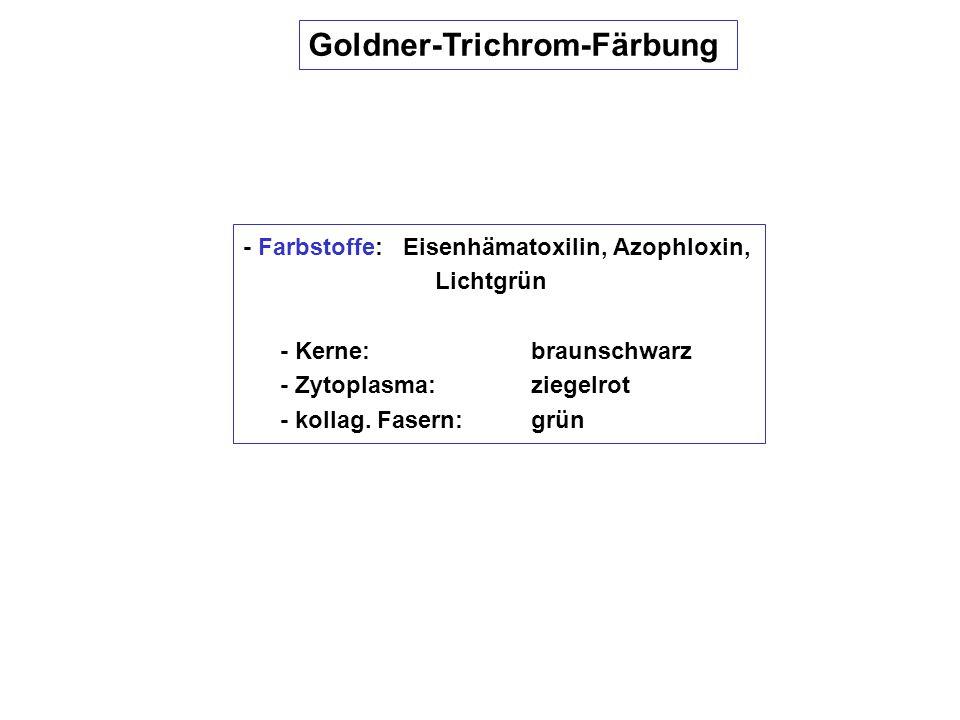 Goldner-Trichrom-Färbung