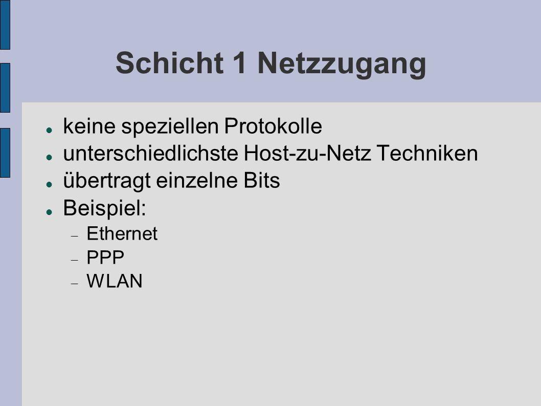 Schicht 1 Netzzugang keine speziellen Protokolle