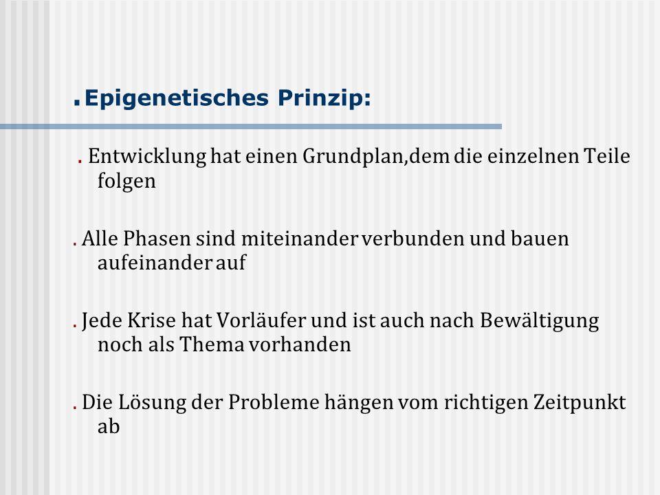 .Epigenetisches Prinzip:
