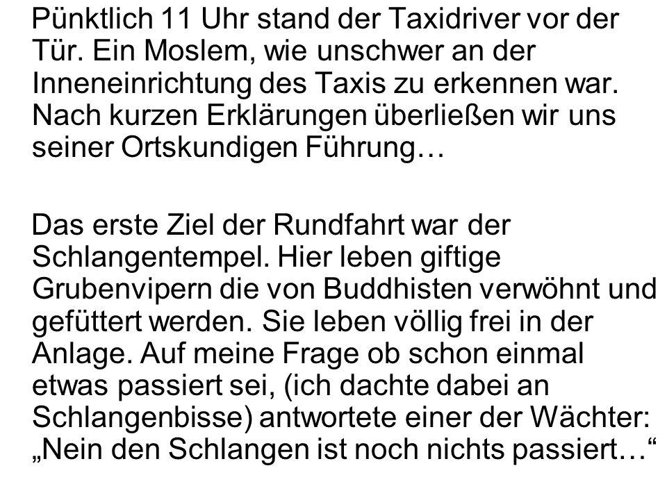 Pünktlich 11 Uhr stand der Taxidriver vor der Tür