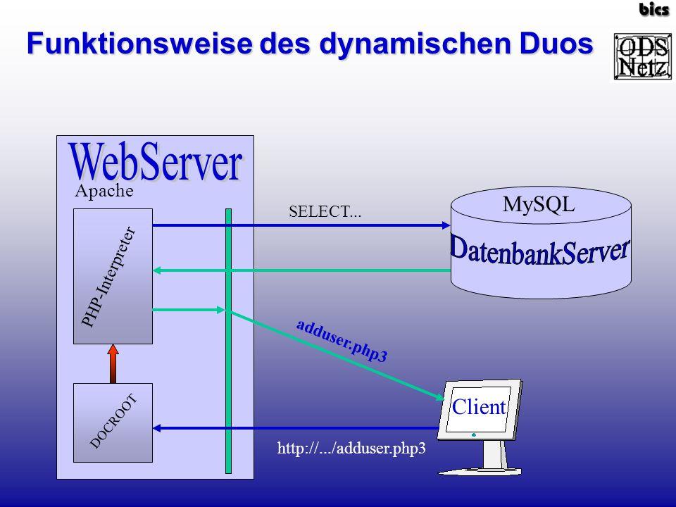 Funktionsweise des dynamischen Duos