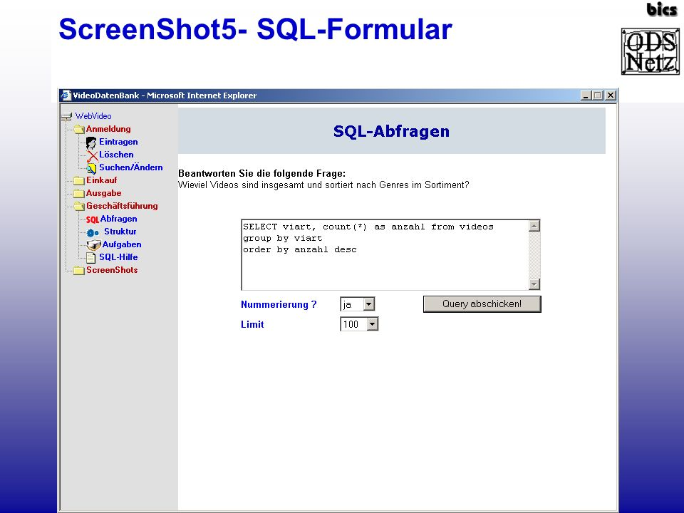 ScreenShot5- SQL-Formular