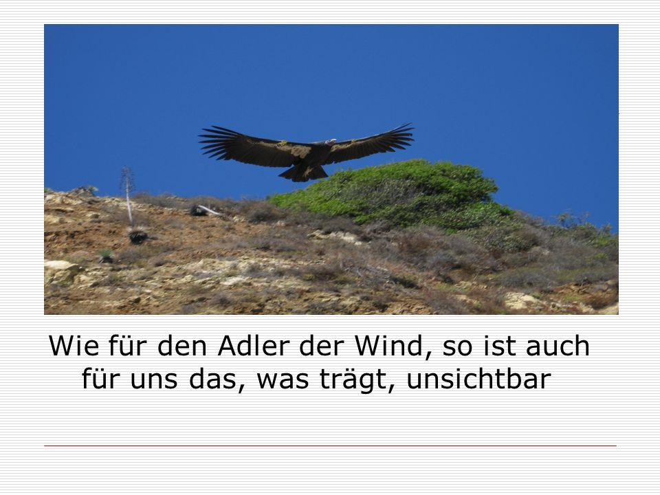 Wie für den Adler der Wind, so ist auch für uns das, was trägt, unsichtbar