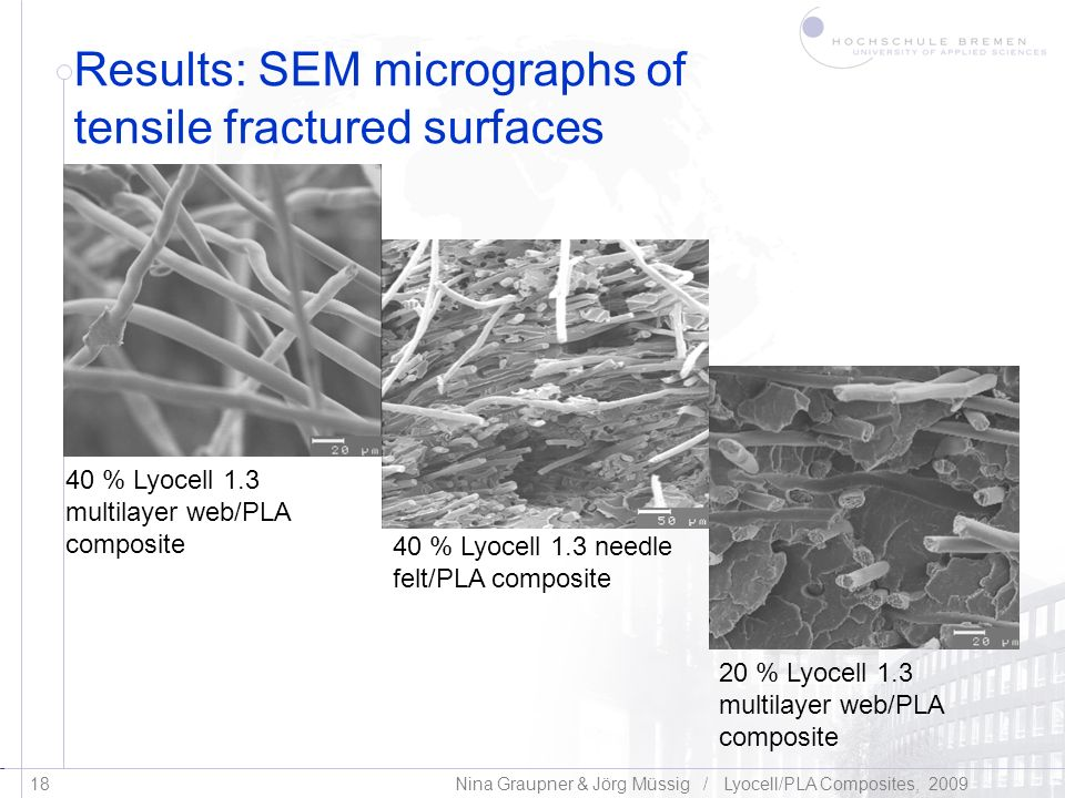 Results: SEM micrographs of tensile fractured surfaces