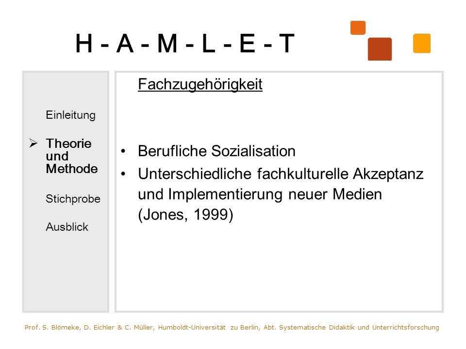 H - A - M - L - E - T Berufliche Sozialisation