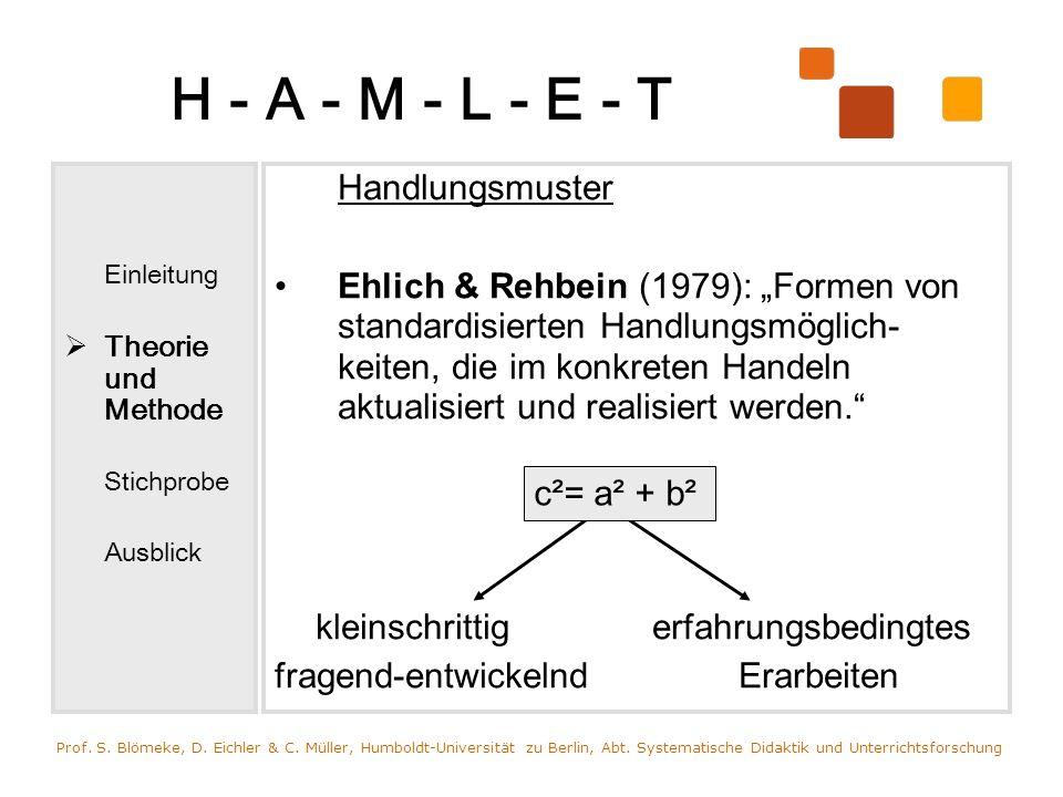H - A - M - L - E - TEinleitung. Theorie und Methode. Stichprobe. Ausblick. Handlungsmuster.