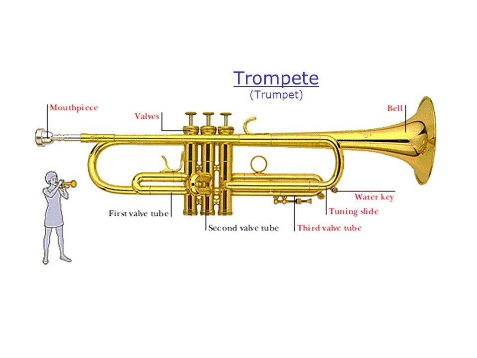 Trompete (Trumpet)