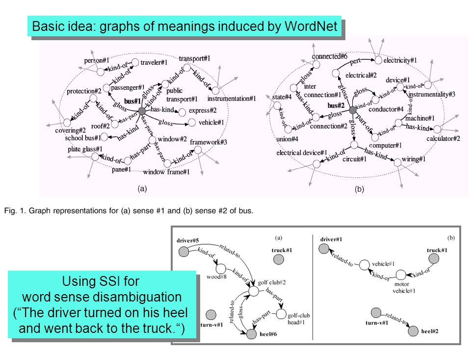 Basic idea: graphs of meanings induced by WordNet