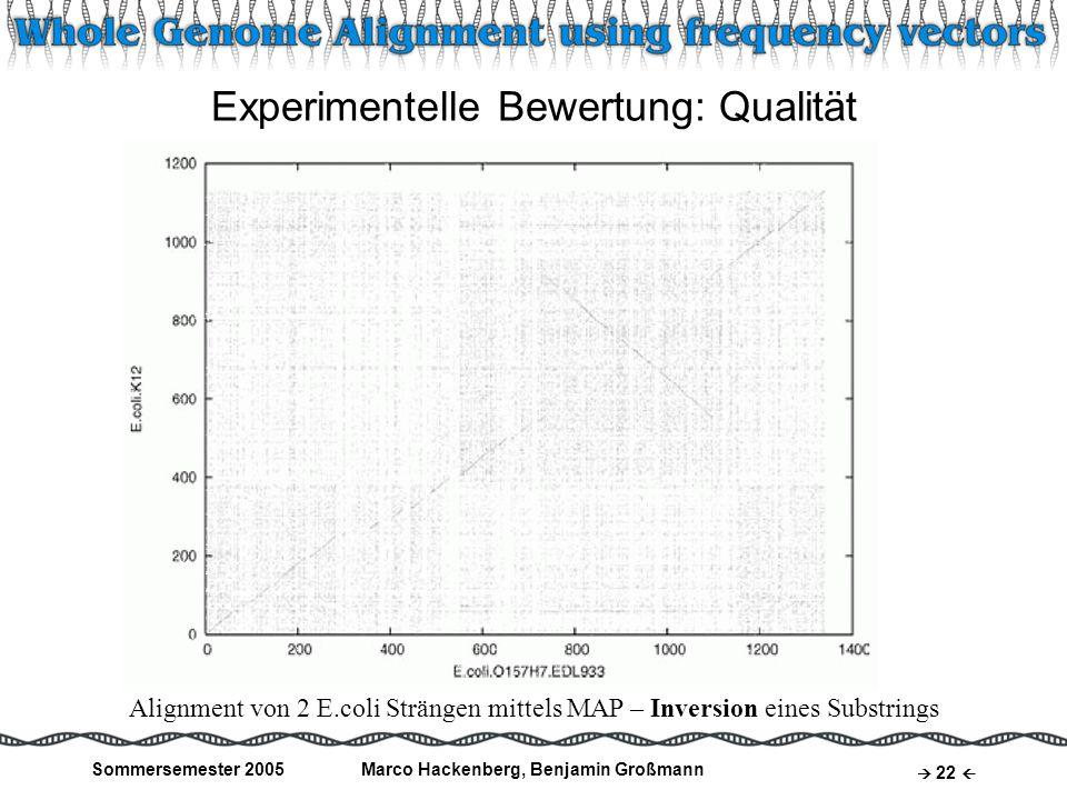 Experimentelle Bewertung: Qualität