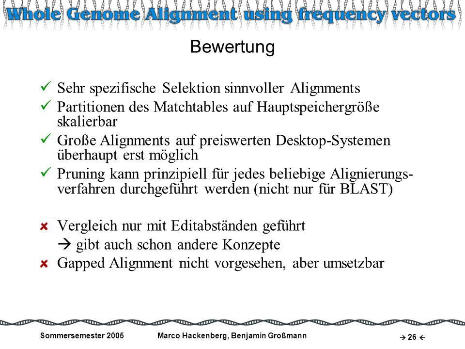 Marco Hackenberg, Benjamin Großmann