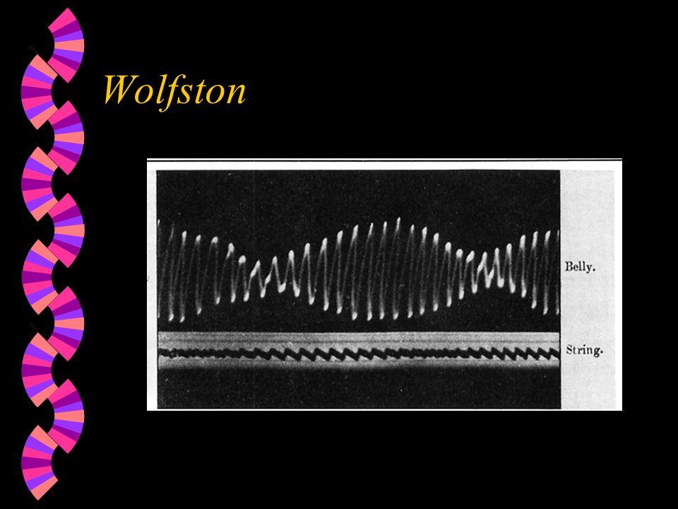 Wolfston