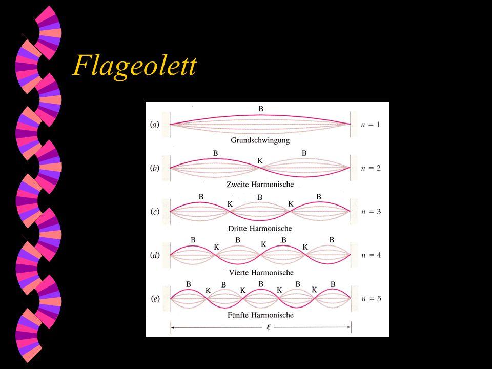Flageolett