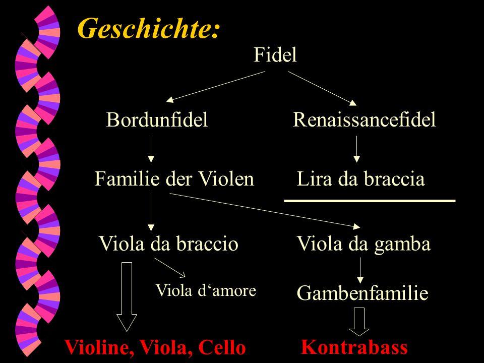 Geschichte: Fidel Bordunfidel Renaissancefidel Familie der Violen