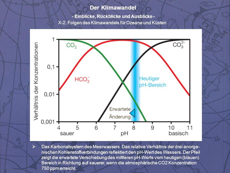 Das Karbonatsystem des Meerwassers