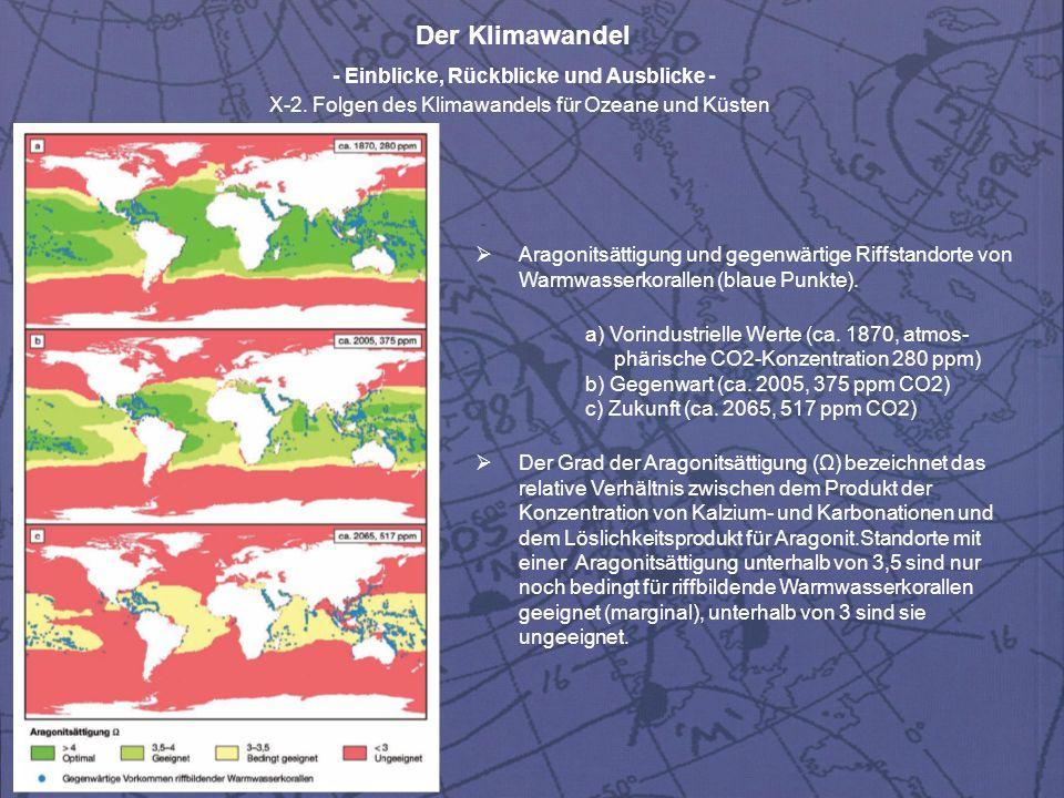 Aragonitsättigung und gegenwärtige Riffstandorte von Warmwasserkorallen (blaue Punkte).