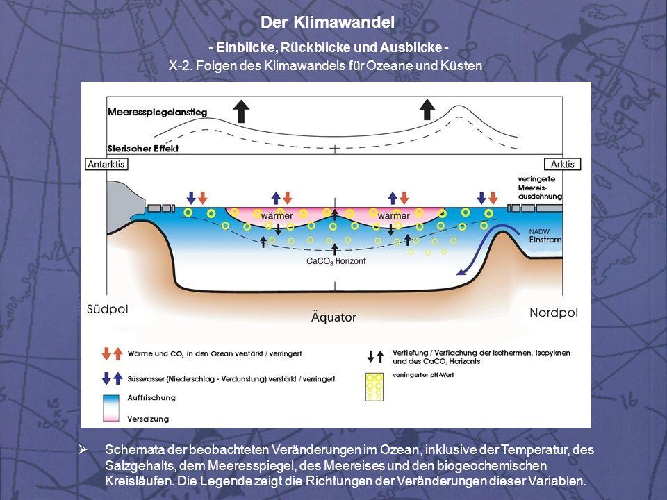 Schemata der beobachteten Veränderungen im Ozean, inklusive der Temperatur, des Salzgehalts, dem Meeresspiegel, des Meereises und den biogeochemischen Kreisläufen.