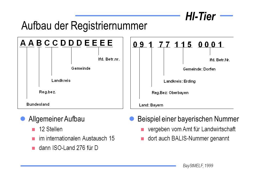 Aufbau der Registriernummer
