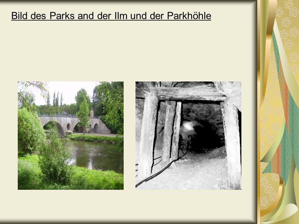 Bild des Parks and der Ilm und der Parkhöhle