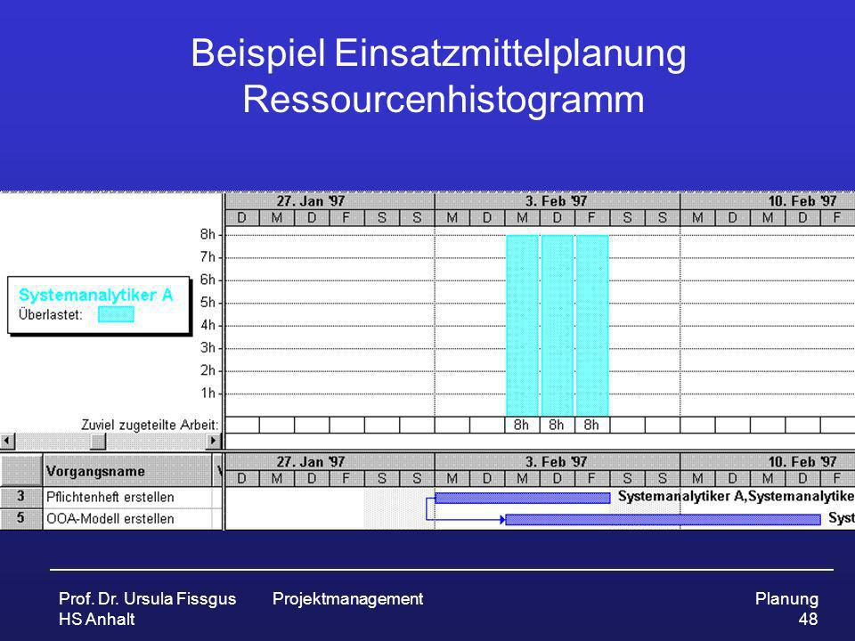 Beispiel Einsatzmittelplanung Ressourcenhistogramm